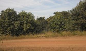 Licenciamento ambiental e mineral